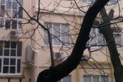 Остекление дома по ул. Канатная